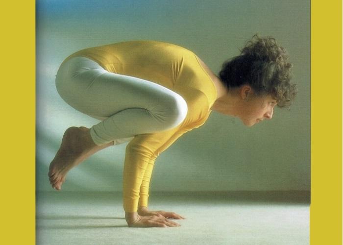 Kakasana-Sivananda Yoga Centro