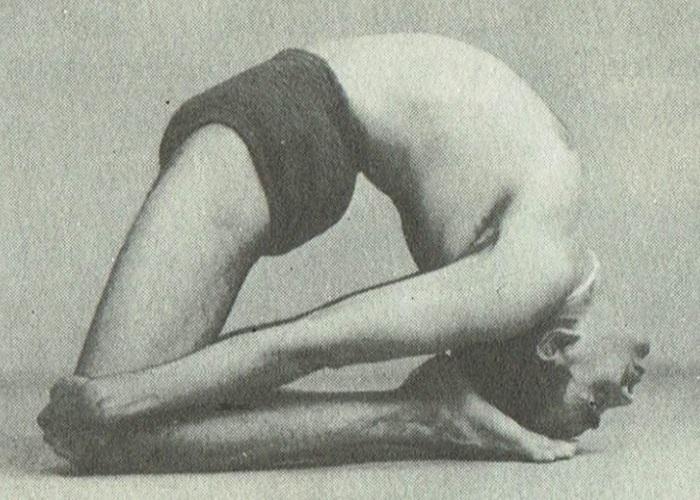 Laghu Vajrasana-B.K.S. Iyengar