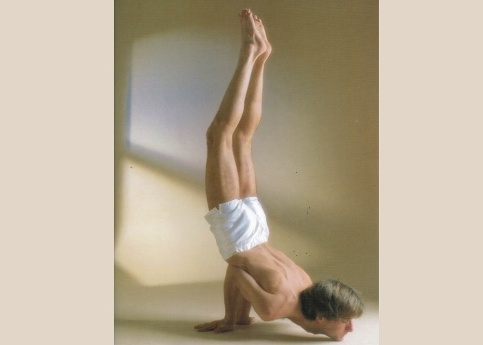 Mayurasana Variante-Sivananda Yoga Centro